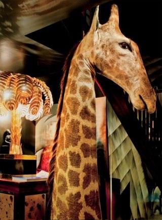 Loulous-giraffe-5-hertford-London