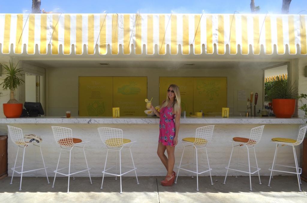 Parker-Palm-Springs-Lemonade