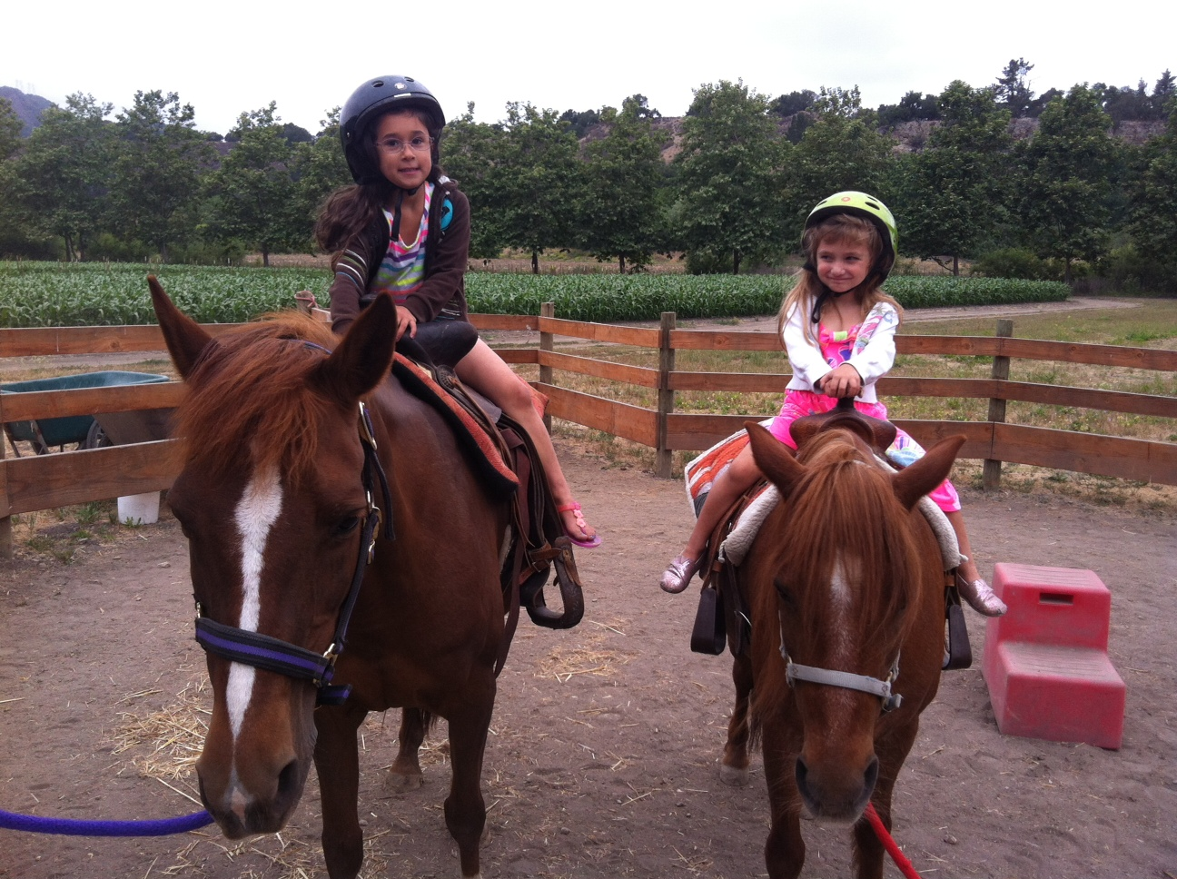 I asked my niece yesterday what her favorite thing to do is and she exclaimed pony rides! =)