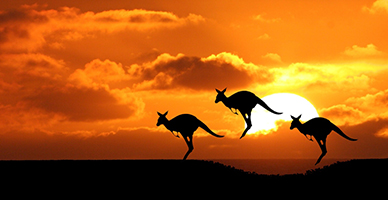 Australia-Pacific