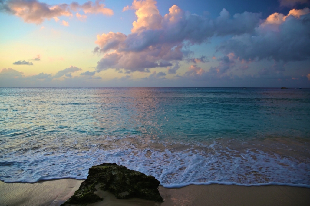 Sandy Cove - Barbados