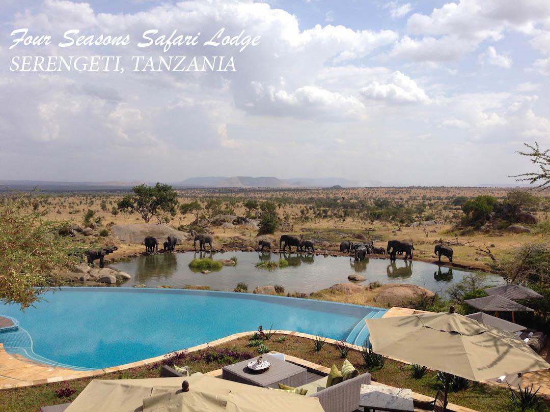 Four-Seasons-Serengeti 2