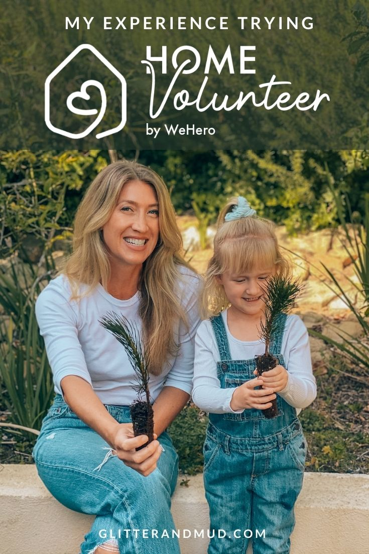 Home Volunteer Review
